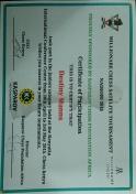 Destiny's Chess tournament certificate